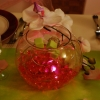 Vase boule, led billes de gel, orchidées