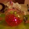 Vase boule, led billes de gel, orchidées