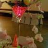 Vase martini structure d'orchidées