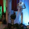 Décor de scène des Miss Arcis sur Aube 2015