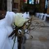 Roses fraîches posées sur le drapé