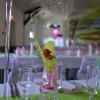Détail orchidée suspendue au vase martini