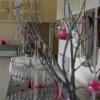 Vin d'honneur, arbre peints et bulles de plexi